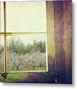 Old Window Looking Out To Apple Orchard Metal Print by Sandra Cunningham