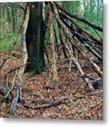 Old Woodland Hide. Metal Print