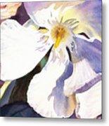 Oleander Close Up  Metal Print