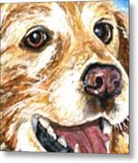 Oliver From Muttville Metal Print