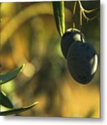 Olives #2 Metal Print
