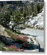 Olmsted Down The Road View Metal Print