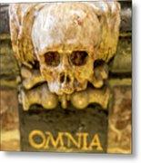 Omnia Mors Aequat Metal Print