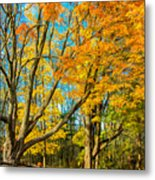 On A Country Road 5 - Paint Metal Print