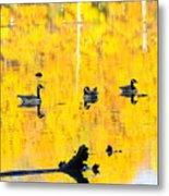 On Golden Pond Metal Print