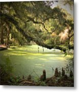 On Swamp's Edge Metal Print