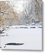 On The Bank Of A Snow Cover Stream Metal Print