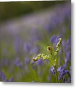 On The Blue Meadow Metal Print