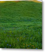 On The Hilltop Metal Print