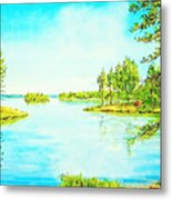 On The Lake In A Sunny Day 2 Metal Print