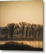On The Marsh Metal Print