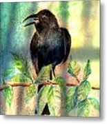 On The Outside Looking In Metal Print by Arline Wagner