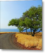 On The Road To Lapakahi Metal Print