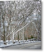 On The Road To Woods Hole Metal Print