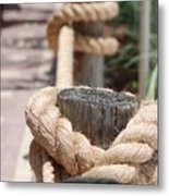 On The Ropes Metal Print