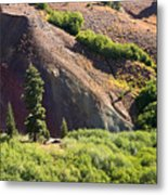 On The Slopes Of Mt. Lassen Metal Print