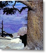 On The West Rim Of The Grand Canyon Metal Print