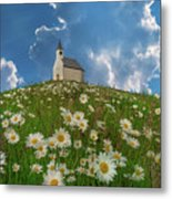 On Top Of The Hill Metal Print