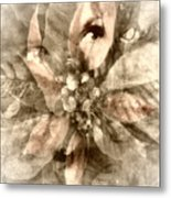 Once Upon Grandmom's Poinsettia Metal Print