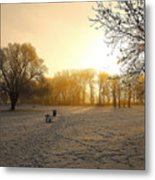 One Cold Morning Metal Print