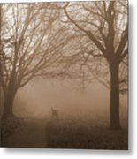 One Foggy Morning Metal Print