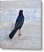 One If By Land Metal Print