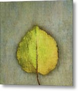 One Leaf Beauty Metal Print