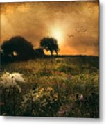 one morning in Clare Metal Print