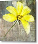 One Must Have Sunshine Freedom And A Little Flower Metal Print