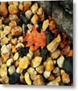 One Orange Leaf Metal Print