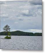 One Pine Island. Koirajarvi Metal Print