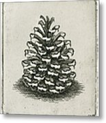 One Pinecone Metal Print