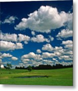 One Summer Day Metal Print