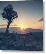 One Tree And Sunset Metal Print