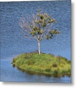 One Tree Island Metal Print
