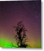 One Tree One Night On The Palouse Metal Print