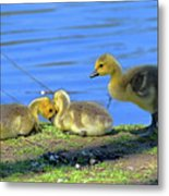 One Up Two Down Metal Print