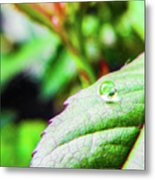 One Waterdrop Metal Print