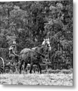 One With The Land - Bw Metal Print