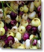 Onions Tri Color Metal Print by Brenda Pressnall