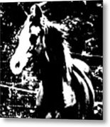 Only A Yearling Metal Print
