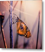 Only Beauty Remains Metal Print