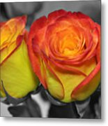 Only Color Metal Print