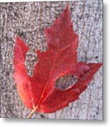 Only One Leaf To Live Metal Print