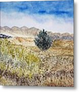 Onyo National Forest Metal Print
