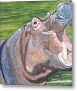 Open Mouthed Hippo On Wood Metal Print