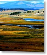 Open Range Metal Print by Carrie Putz