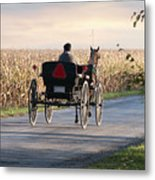 Open Road Open Buggy Metal Print by David Arment