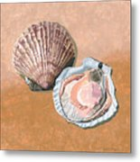 Open Scallop Metal Print
