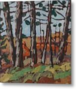 Opinicon November Forest Metal Print
